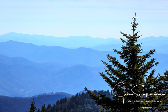 From atop Clingman's Dome