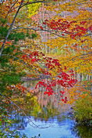 Maine Autumn Pond